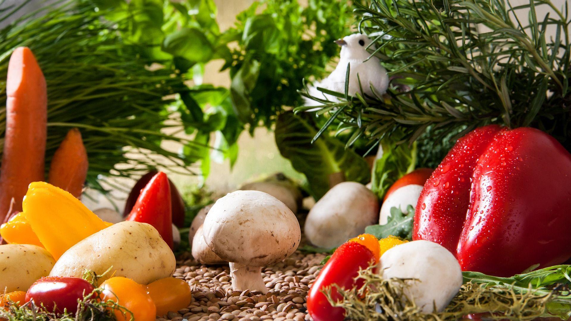 Gemüsebeete für Kids